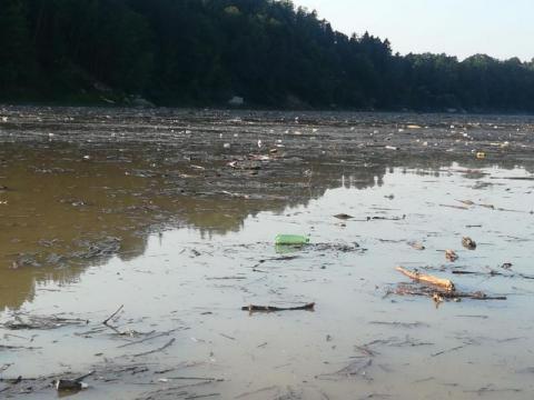 Jez.Rożnowskie zamieniło się w wysypisko śmieci.W takiej wodzie kąpią się dzieci