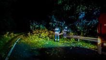 Nad Sądecczyzną przeszła wichura. Powalone drzewa, uszkodzone dachy [ZDJĘCIA]