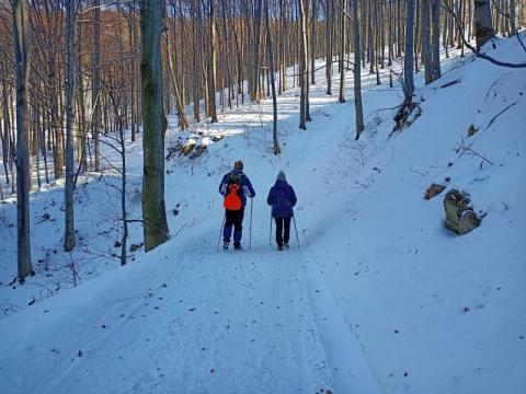 Biegacze, narciarze! Barani Szlak przetarty do samej Cyrli