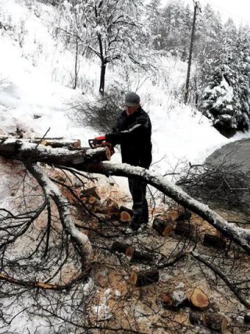 Rytro: nie było drogi bez połamanych drzew. Słupy energetyczne też się poddały!