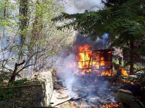 Zauważyli dym nad lasem w Znamirowicach. Dzięki nim udało się uniknąć tragedii