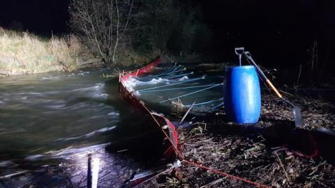 Nie do wiary! W potoku Jastrzębik znaleziono 100 martwych kur