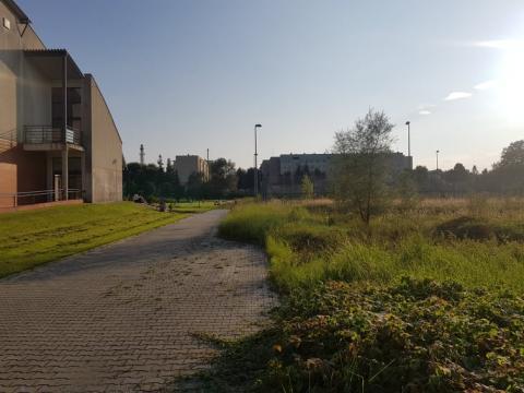 Nowy Sącz: kiedy oddzielą szkołę od patologii na Wojska Polskiego?