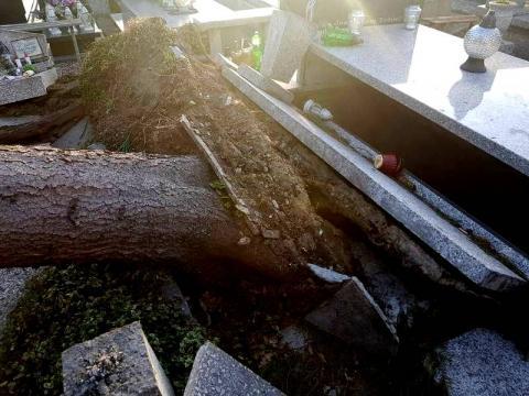 Wiatr przewrócił drzewo na cmentarzu w Nowym Sączu. Zniszczone został nagrobki