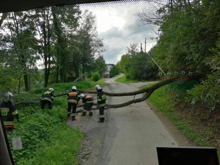 Czerniec usuwanie powalonego drzewa, fot. PSP w Nowym Sączu