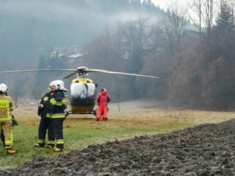Dramatyczny wypadek w lesie. 40-latek spadł z drzewa [ZDJĘCIA]