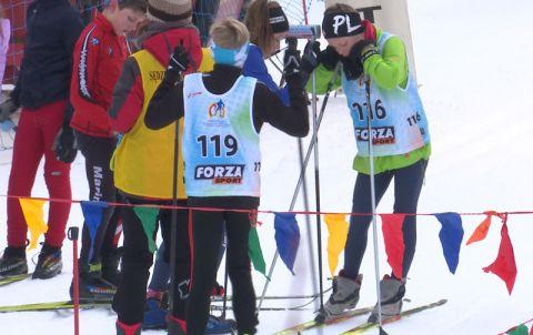 zawodnicy narciarstwa biegowego