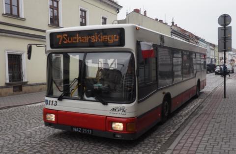 Bezpłatne autobusy na Sądeckie Targi Ogrodnicze