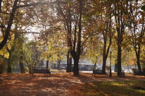 Jesień w Nowym Sączu. Fot. Iga Michalec