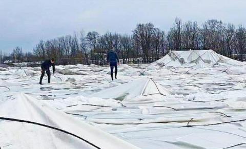 Czy od śniegu zawaliła się  hala sportowa? Co naprawdę wydarzyło się w Szalowej