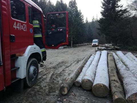 Tragedia w Homrzyskach. Syn znalazł w lesie ciało swojego ojca