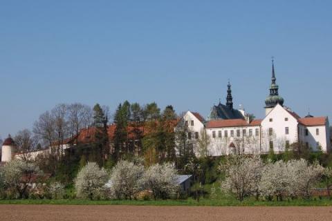 Jak głosował Stary Sącz: wyniki wyborów parlamentarnych 2019 PKW