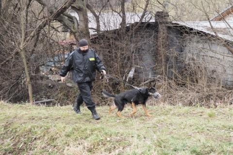 Zakopane: kilkuset policjantów, strażaków i ratowników szuka zaginionej 90-latki