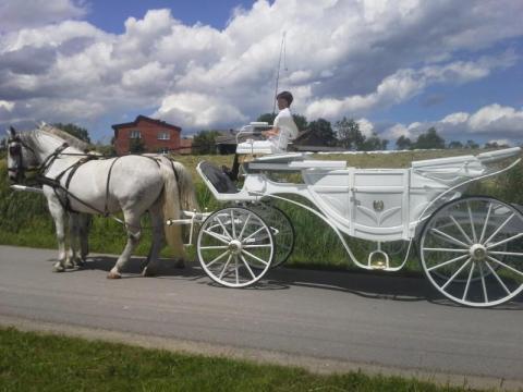 Skradziono siedem koni w Kurowie, fot. Stadnina Klimkówka A. Woda