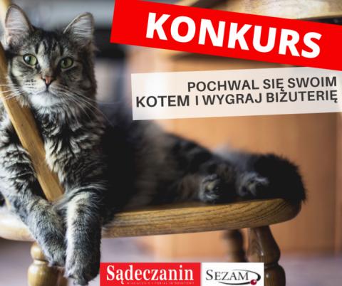 Konkurs: pochwal się zdjęciami swojego kota i wygraj biżuterię!