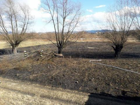 Wypadków jest mniej, ale strażacy bez przerwy gaszą płonące trawy