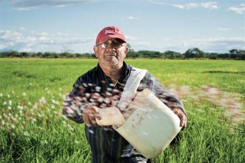 Obowiązkowy powszechny spis rolny 2020. Jakie pytania usłyszą rolnicy?