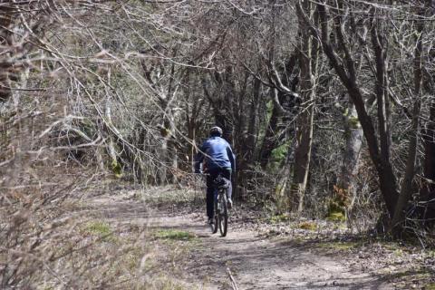 Ponad 100 km tras dla cyklistów wokół Krynicy. Ich nazwy, jak wody mineralne