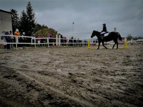 Sądecki Turniej Jeździecki w Kobylance, stajnia Galopada