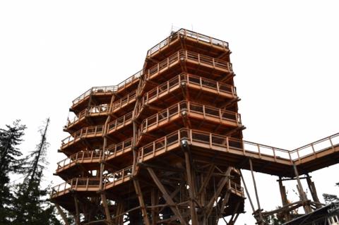 Ta wieża robi międzynarodową karierę. Spacer w koronach drzew, góry jak na dłoni