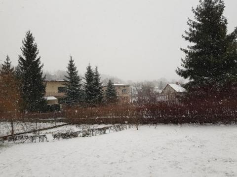 ogodowy. Wielki powrót zimy wiosną w Nowym Sączu [WIDEO]