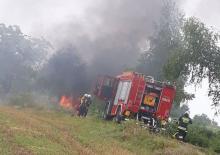 Musiała uciekać z płonącego auta. Jej samochód uderzył w drzewo i stanął w ogniu