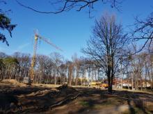 Park Strzelecki, prace, rewitalizacja