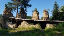 Zamek Zawiszy Czarnego w Rożnowie. Zapomniane ruiny