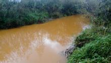 rzeka Muszynka w Powroźniku, fot. czytelnik