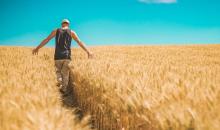 Z końcem czerwca ruszy dofinansowanie utylizacji odpadów rolniczych. Fot. Pixabay