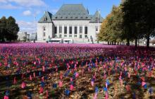 22 października przedstawiciele ponad trzydziestu państw, w tym Polski, Węgier, Stanów Zjednoczonych, Brazylii i Egiptu wsparli Deklarację w sprawie Konsensusu Genewskiego.