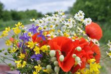 Wierni świętują Wniebowzięcie Maryi. W jej trumnie znaleziono kwiaty i zioła
