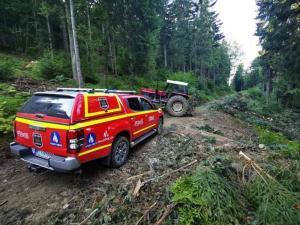 Fatalny wypadek podczas prac w lesie. Konar drzewa spadł na mężczyznę