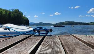 Jezioro Rożnowskie tonie w mule. Marek Gróbarczyk odpowiedział na interpelację
