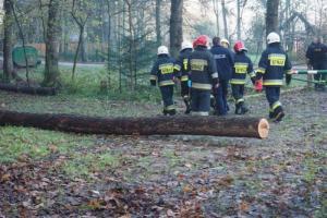 Tragedia w Wierchomli Wielkiej. Nad ranem znaleźli w lesie powieszone ciało