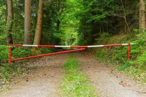 Wprowadzono zakaz wstępu do lasów